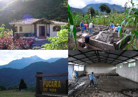 Volunteer work in the Pucara community